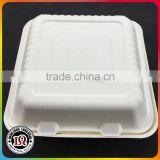 Bagasse Cheap Food Container