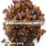Good Quality of 90% Brown Raisin on Sale