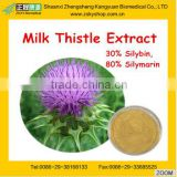GMP manufacturer supply top quality Maintain Liver Health Milk Thistle Seed Extract powder