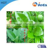 sahara herbicide label Agricultural silicone surfactant IOTA2000 for foliar absorption aids