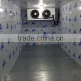 air cooled chiller cold room with lower price                                                                         Quality Choice