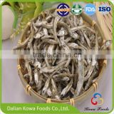 2016 Kowa hot sale wholesale dried BABY ANCHOVY fish
