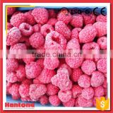 Hot Selling Raspberry Frozen Price