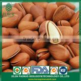 China Supplier of New Crop Siberian Open Pine Nuts in Shell