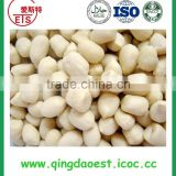 Factory dry blanched peanut kernel in fresh new quality material