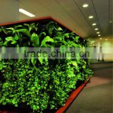 factory price high quality artificial plant wall/artificial vertical garden wall
