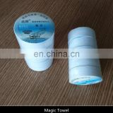 Compressed Coin Disposable Towel