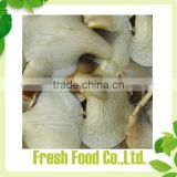 canned king oyster mushroom