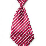 Plain Red Mens Silk Necktie Digital Printing Boys