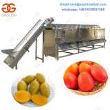 Hot Sale Mangoes Sorting Machine/Stainless Steel Mango Sorting Machine/Automatic Mango Sorting Machine