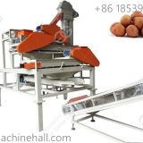 Hazelnut sheller machine for hot selling in factory price China supplier hazelnut shelling machine