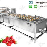 Industrial Strawberry Washing Machine