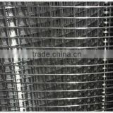 304 stainless square steel welded wire mesh/hot dipped galvanized iron wire welded mesh/PVC coated welded wire mesh