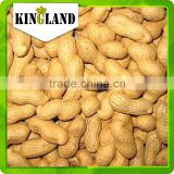 bulk peanuts in shell for sale