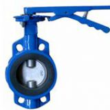 Butterfly Valve / Pump Impeller / Vibrating Motor / Union