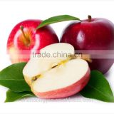 China red apple Yantai fuji apple Cheap price high quality