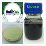 Habio Lipase in powder and liquid form