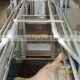 Sow dry-wet feeder used on Farrowing crate