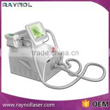 2 Handles Portable Cryolipolysis Weight Lose Weight Loss Body Slimming Machine Skin Lifting