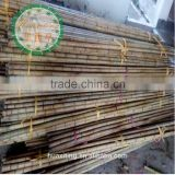bamboo poles wholesale/wholesale natural raw bamboo poles sale with great quality/bamboo poles cheap