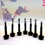 Full Black Brush for Nail Polish,Gel Nail Polish Brush