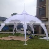 New style giant spider tent,dome tent,party tent