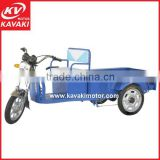 Many different models Cargo Vehicle Tricycle/ 3 Wheels Electric Scooter Electric Tricycle