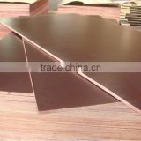 Lianshengwood supply plywood with 17 years that plywood production line for Russia market sale
