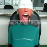 top quality Dental Simulator manikin with torso                                                                         Quality Choice