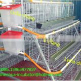 taiyu Poultry Battery Cage System Ghana (lydia : 008615965977837)