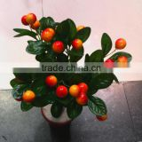 making artificial bonsai trees for sale indoor decoration