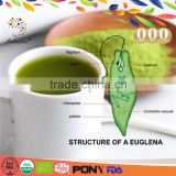 Hot sale 100% natural instant euglena green tea for health & weight loss