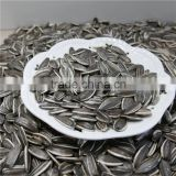Hulled hybrid of Sunflower Seeds China Origin 5009 New corp