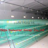 Factory-supplying Wholesale poultry cages (egg laying birds,broilers,breeding chicken, day old chicken)