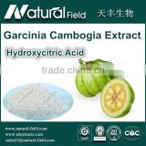 Garcinia Cambogia Extract Hydroxycitric Acid Hottest Loss Weight Product