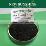 Organic seaweed extract alga powder fertilizer