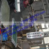 OEM orders food paper pulp tray factory