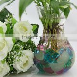 water hyacinth vase glass product