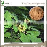 High Quality Siberian Ginseng Extract, Siberian Ginseng Extract Powder, 100% Eleuthero Extract