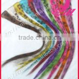 Wholesale Leopard Print Hair Feather Clip In Hair Extension China cheap ombre feathers cut hair ombre feather hair products