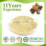100% pure nature camellia seed extract tea saponin powder, low price bulk 60% Tea saponin