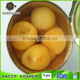 Special offer 2014 New Corp Canned Loquat