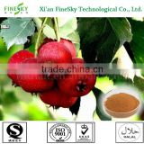 High quality Natural hawthorn berry/leaf extract powder