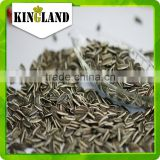 Wholesale export biggest sunflower seeds
