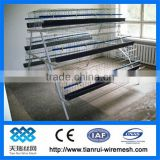 Hot Galvanized Automatic Chicken Cage for growing broilers and pullets