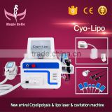 Vertical Multifunctional Cryolipolysis Device!!! Laser/RF/40K Cavitation Cryolipolysis Machine For Home Use Increasing Muscle Tone