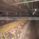 Chinese hot sale automatic poultry farming complete equipment