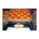 Fresh Navel Blood Orange , Honey Orange Contains Citral , Vitamin A , No Chemical Pesticide