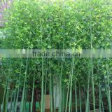the good quality evergreen leaf artificial outdoor bamboo tree bamboo plants artificial lucky bamboo for sale                                                                         Quality Choice
