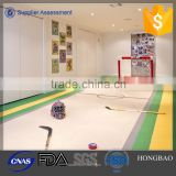 synthetical ice rink hockey fences/hockey shooting pad/roller skating rink flooring with the best price supplier